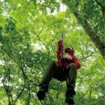 森林生態学公開実習