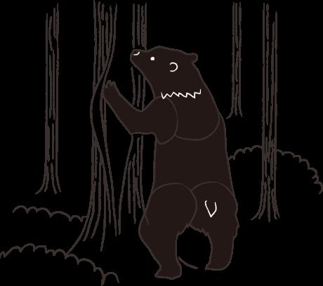 クマハギ01
