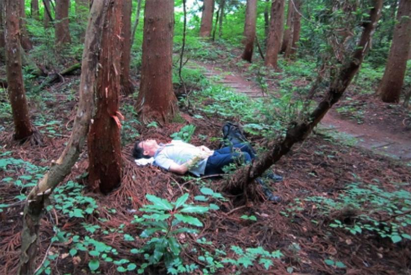 信州信濃町癒しの森の森林セラピーの一コマ 2