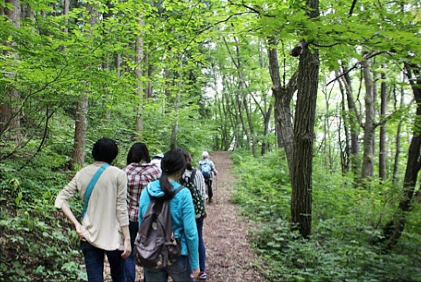 信州信濃町癒しの森の森林セラピーの一コマ 3