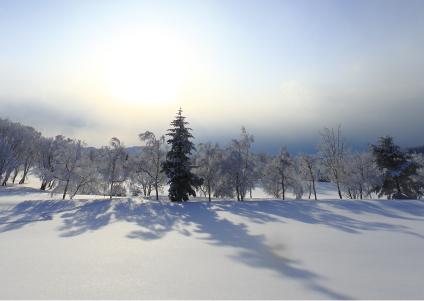冬の低温環境