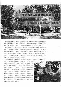 菅平高原生物実験所植物園