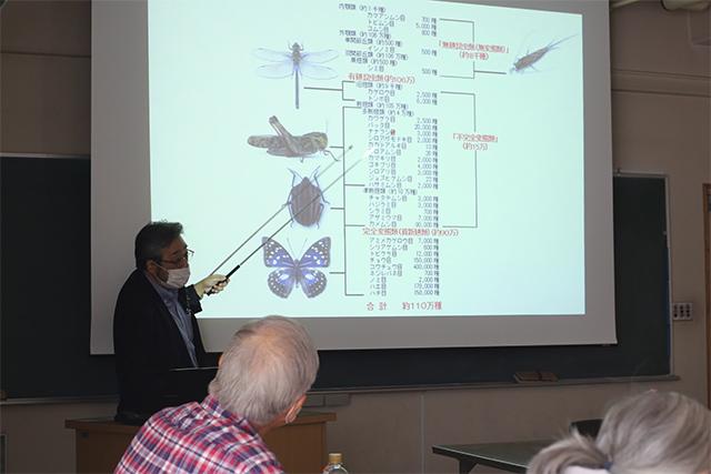 町田特命教授による、昆虫の分類についての講義